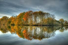 spiegelbeel